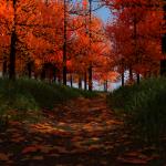 Autumn Path Version 3