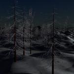 Snowy Moonlit